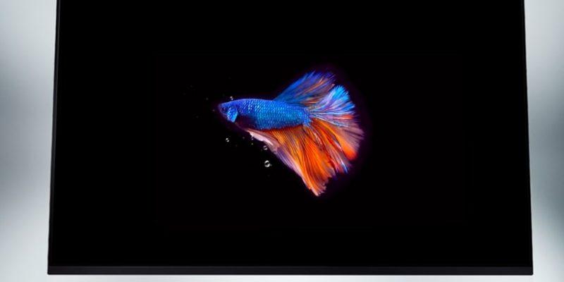 LG lanzará en 2020 televisores OLED de 48 pulgadas